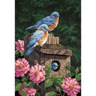 Dimensions . DMS Garden Bluebirds 14 X 20 Paint By Number