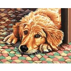 Dimensions . DMS DOG TIRED P BY # 11X14