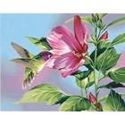 Dimension Engineering . CEL Hibiscus Hummingbird 11X 14