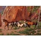 Cobble Hill . CBH (DISC) - Horse Canyon 1000Pc Puzzle
