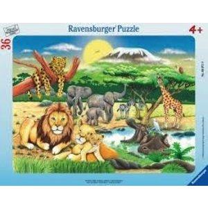 Ravensburger (fx shmidt) . RVB Africa Animal Puzzle 36Pc