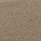 Wedding Star . WST Crystalline Quartz Decorative Sand - Champagne (colour)