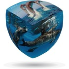 ORBET . OBT DOLPHIN V-CUBE PILLOWED