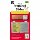 American Educational Products . AEP PREPARED SLIDE SET ANIMAL