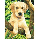 Colart Color & Co . COL LAB PUPPY PAINT BY #