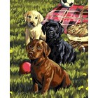 Plaid (crafts) . PLD Puppy Picnic Paint By #