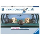 Ravensburger (fx shmidt) . RVB All Labs Matter
