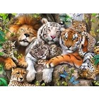 Ravensburger (fx shmidt) . RVB Big Cat Nap 200Pc