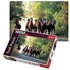 Trefl (puzzles) . TRF English Stallion 1000Pc Puzzle