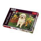 Trefl (puzzles) . TRF Puppy In Garden 500Pc Puzzle