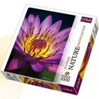 Trefl (puzzles) . TRF Nature Water Lily 1000Pc Puzzle