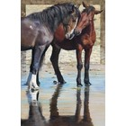 "Plaid (crafts) . PLD Reflections (Two Horses) Paint by Number (16""x20"")"