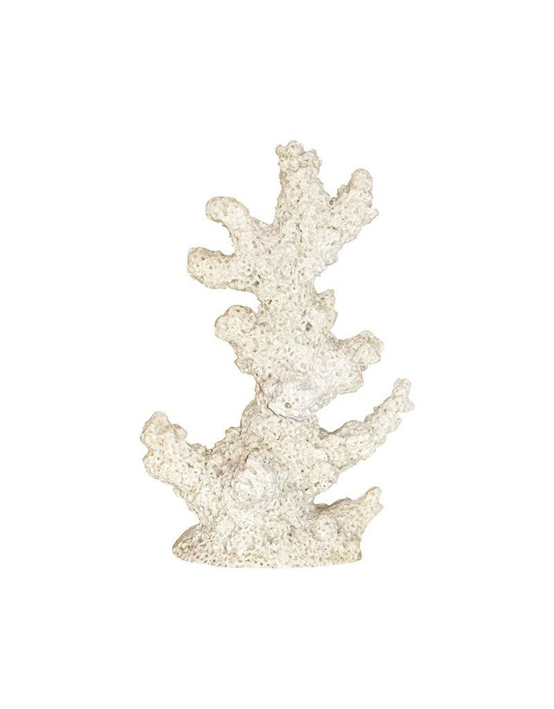 Sand Coral Extra Large