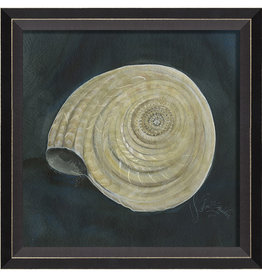 The Artwork of Kolene Spicher Seashell Framed Print