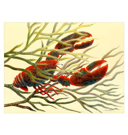 Lobster in Drifting Kelp Canvas Print