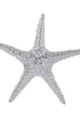 Electroplated Silver Starfish