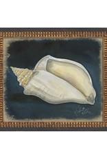 The Artwork of Kolene Spicher Conch Shell Framed Print