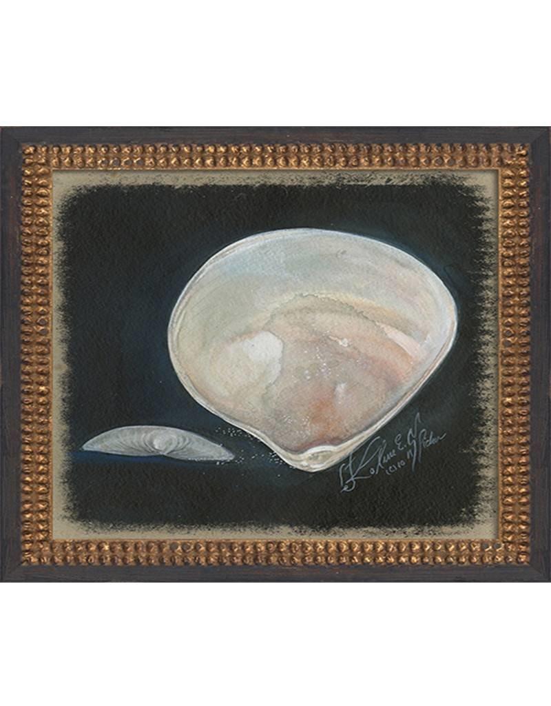 Clam Shell Framed Print