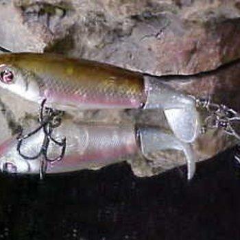 """River2Sea River2Sea Whopper Plopper 110 Topwater Lure, 4 3/8"""", Munky Butt"""