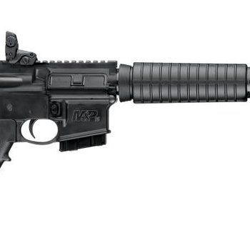 Smith & Wesson Smith & Wesson 11617 M&P 15 Sport Rifle 5.56 5rd Black w/dust cover & MagPul Rear Sight