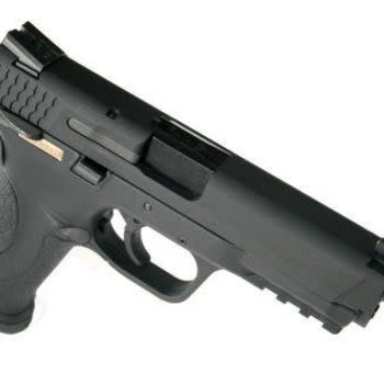 we WE M&P Black w extended barrel and silencer