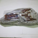 North Shore Crayfish plastic bait - Brown Pearled