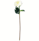 20 inch White Real Touch Peony Stem