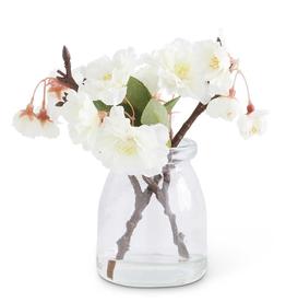 6.5 Inch Cream Cherry Blossom in Glass Jar