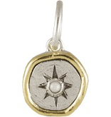 Waxing Poetic Wandering Star Charm