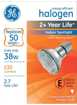 GENERAL ELECTRIC 38W HALOGEN PAR 20 INDOOR/OUTDOOR SPOTLIGHT
