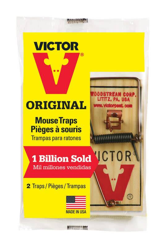 MOUSE TRAP 36 PKG PER CARTON
