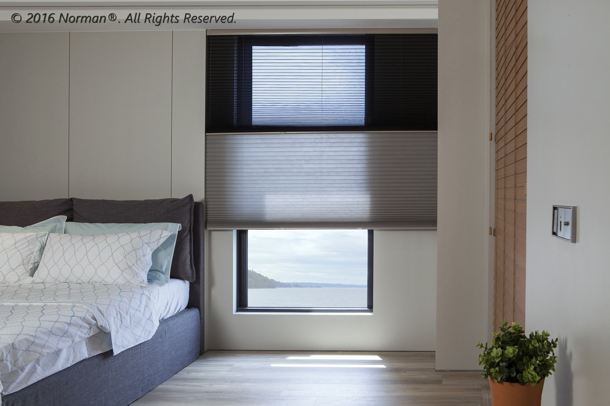 """Norman Window Shades 9/16"""" Single Cell Cordless Honeycomb 60"""" Width and Up"""
