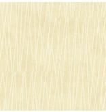 Wallquest Gidget Lines