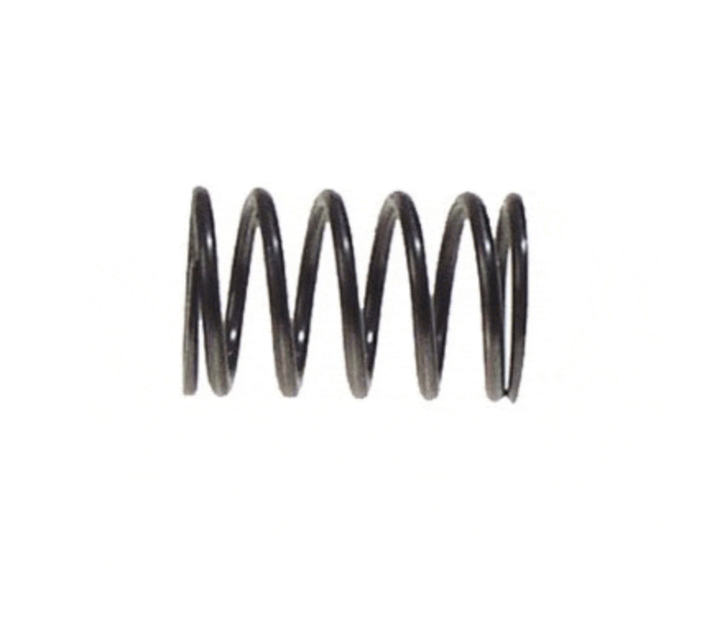 91-UP 295 CC VALVE SPRING 4CYC