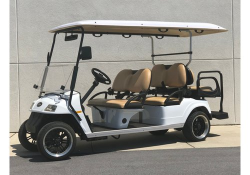 2014 STAR 6 PASSENGER STREET LEGAL (WHITE)
