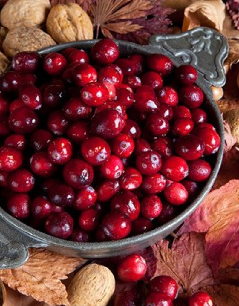 CRANBERRY WALNUT BALSAMIC VINEGAR