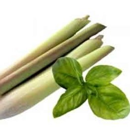 BASIL LEMONGRASS OLIVE OIL