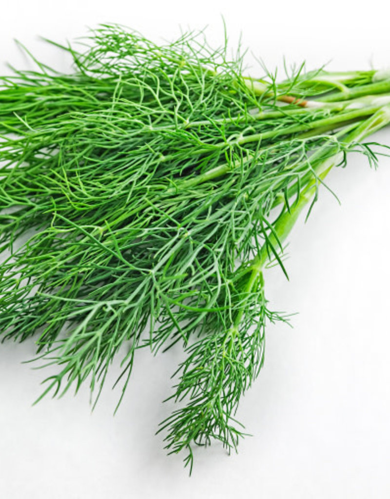 FRESH DILL WHITE BALSAMIC
