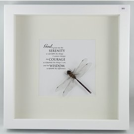 Dragonfly, Canada
