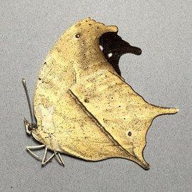 Nymphalidae Salamis anacardii duprei M A1 Madagascar