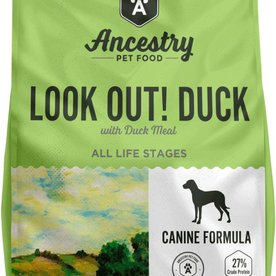 Ancestry Ancestry Look Out! Duck! ~ More Sizes Available