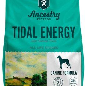 Ancestry Ancestry Tidal Energy