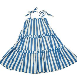 Pink Chicken garden dress- blue stripe