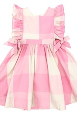 Pink Chicken amy dress- pink gingham