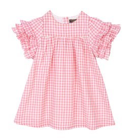 Velveteen regina dress- coral gingham
