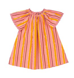 Velveteen rose dress- multi stripe