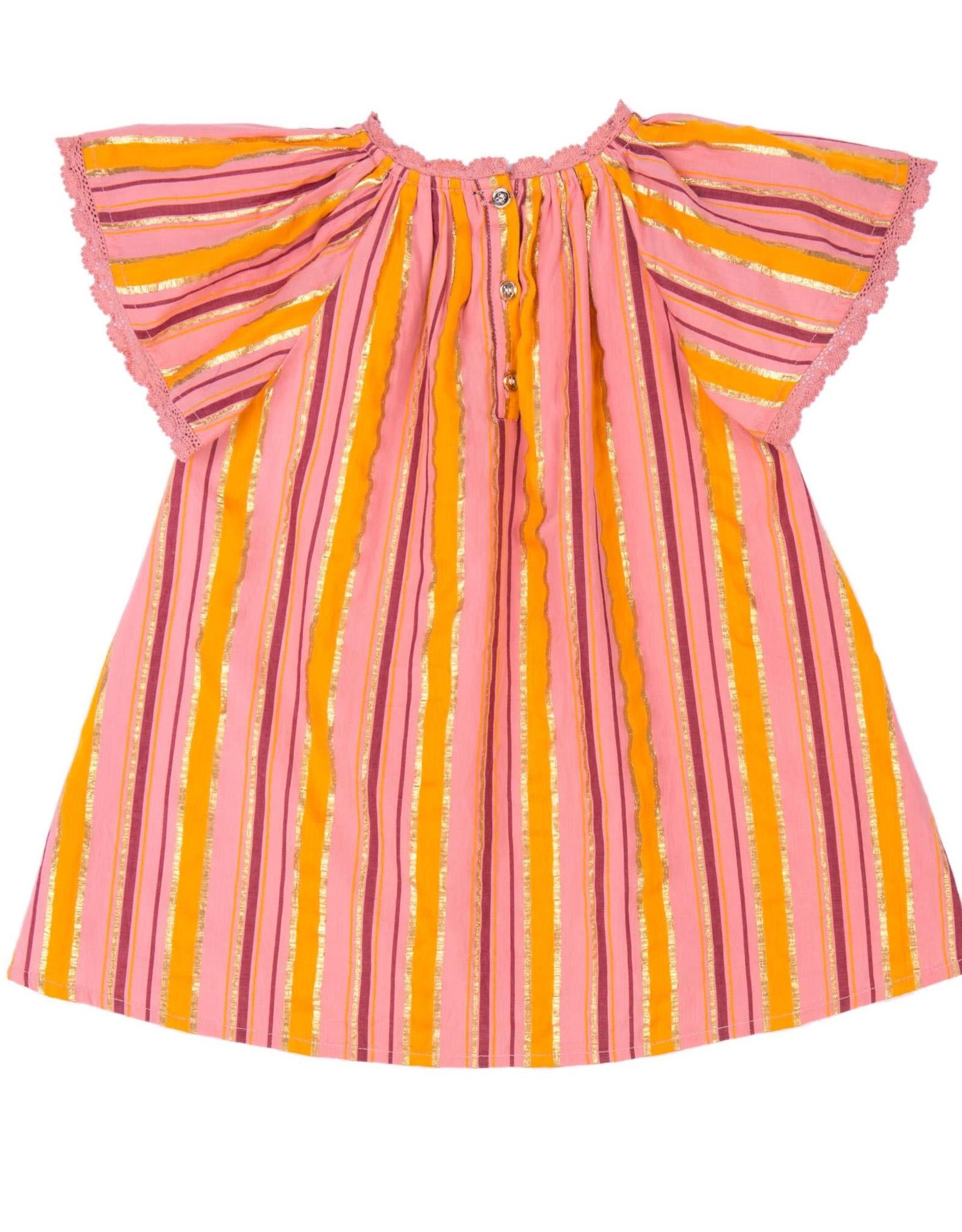 Velveteen rose dress- multi stripe