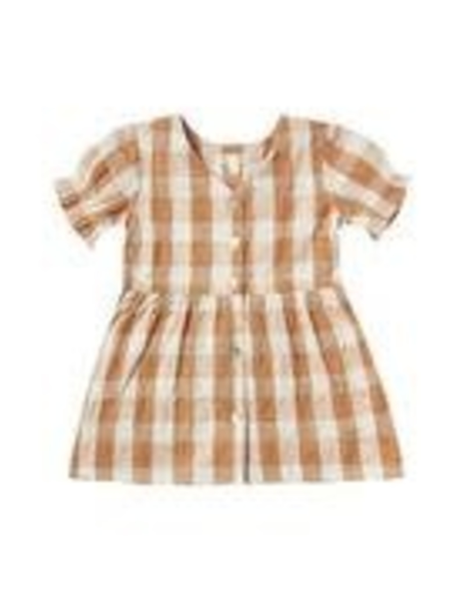 Rylee and Cru check jeanette dress