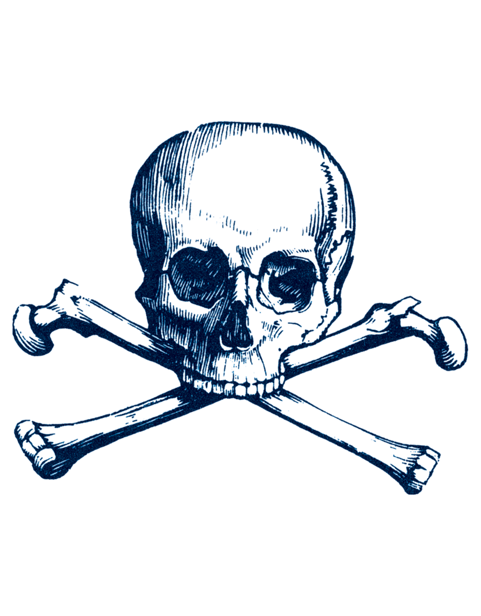 Tattly tattoo pair- cartolina skull