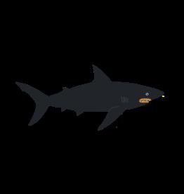 Tattly tattoo pair- dark waters shark